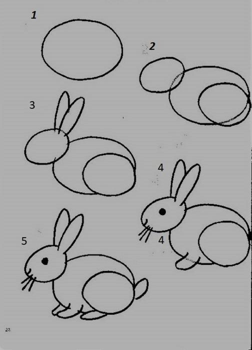 Tavşan Resmi çizimi Tavsanlarnet